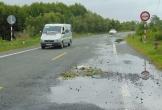 Cà Mau: Xin thôi ủy thác bảo trì đường về Đất Mũi