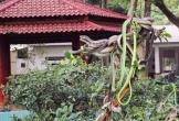 4 điểm du lịch ở Việt Nam khiến khách vừa đi vừa rùng mình sợ hãi