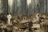 48 người chết vì cháy rừng ở California, nhà xác di động được thiết lập
