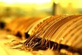 Giá vàng hôm nay 14/12: Vàng thế giới vẫn cao, trong nước tụt đáy