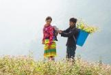 Ngắm đồi hoa tam giác mạch tuyệt đẹp ở Hà Giang