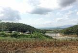 Thanh Hóa: Dừng hoạt động xưởng chế biến tinh bột dong và sắn gây ô nhiễm