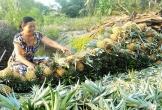 Giúp nông dân thích ứng với biến đổi khí hậu