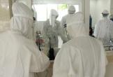 Bệnh nhân tử vong vì dịch COVID-19 đã vượt lên 4 con số